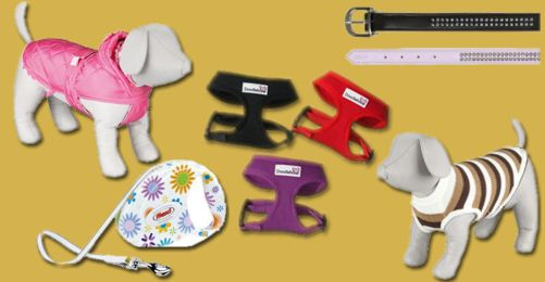 The latest in fashion and accessories for your dog