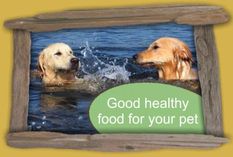 Good healthy food for all your pets